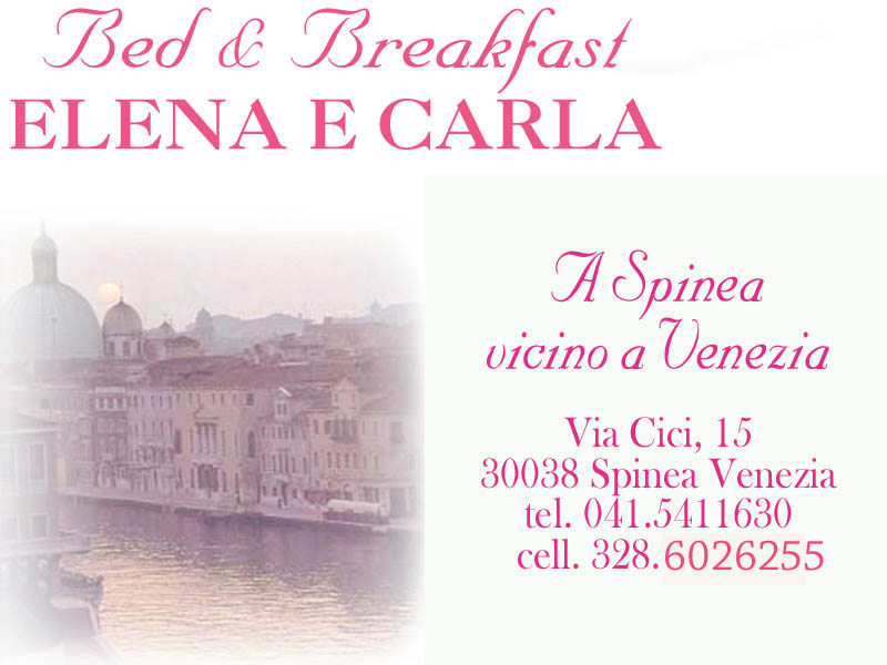 Bed & Breakfast Elena e Carla Spinea Venezia